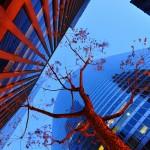 """Shivering Tree in the Urban Jungle"" by Prasad Kohlkute"